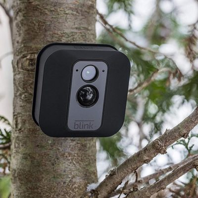 Blink XT Home Security Camera On A Tree